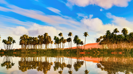 Palm trees near oasis in Africa 3d rendering