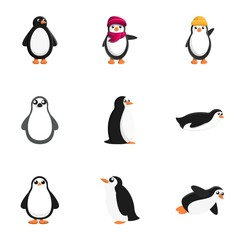 Wall Murals Birds, bees Penguin icon set. Cartoon set of 9 penguin vector icons for web design isolated on white background