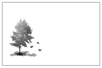 Trauer, weißes Bild mit Baum und fallenden Blättern