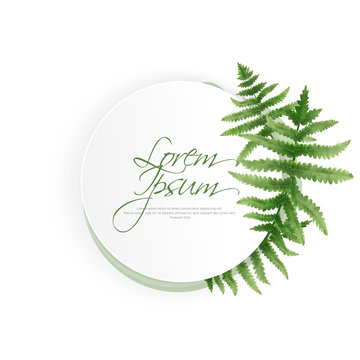 Circle watercolor fern frame, border, wreath, cover template layout vector