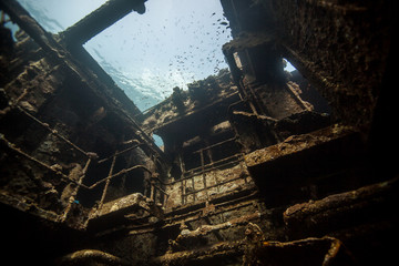 Wreck of a Cargo Ship, Abu Nuhas, Egypt