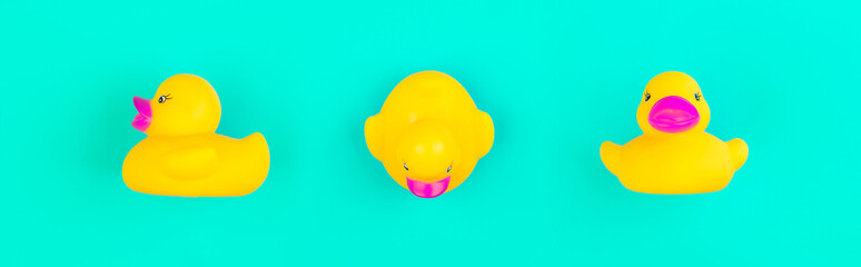 Yellow rubber duck on blue background