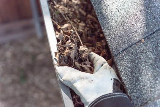 Close-up hand in gloves cleaning dried leaves from gutter in America