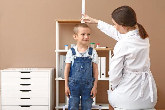 Female doctor measuring height of little boy in hospital