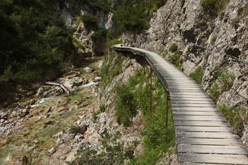 Boardwalk on hiking trail in Oetschergraben near to the Oetscher in Austria, Europe