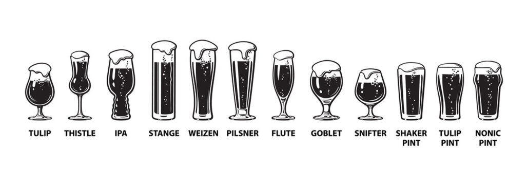 Beer glassware guide. Various types of beer glasses. Hand drawn vector illustration on white background.