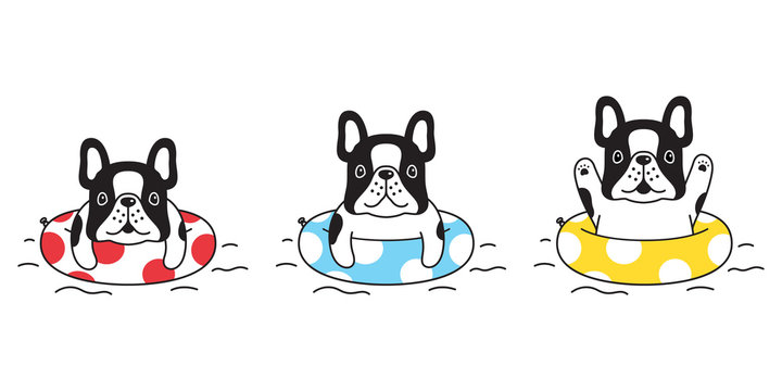 dog vector french bulldog icon swimming ring pool cartoon character symbol illustration doodle design