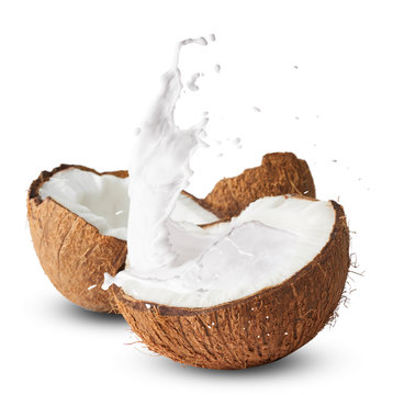 Fresh ripe coconut isolated on white background