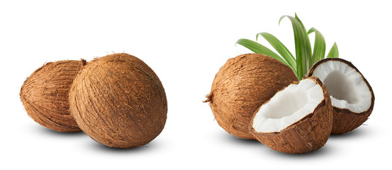 Foto auf AluDibond Palms Set with Fresh raw coconut with palm leaves isolated on white background.