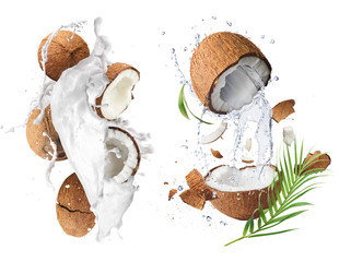 Creative Collection set with Flying in air fresh ripe whole and cracked coconut with milk splashes