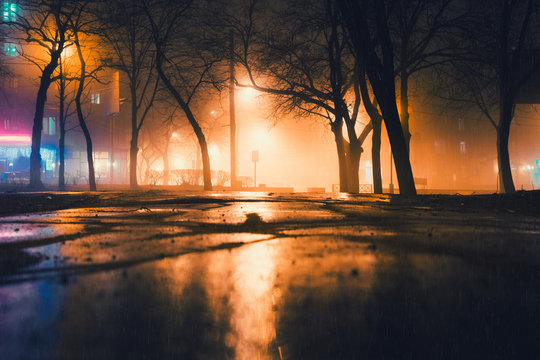 Foggy and rainy night in a city park