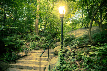 Beautiful landscape from Central Park, New York City with steps and lamp post