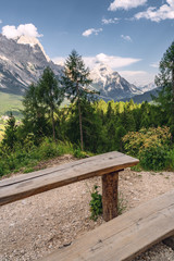 Fototapete - Scenic landscape with green forest, wooden table and bench