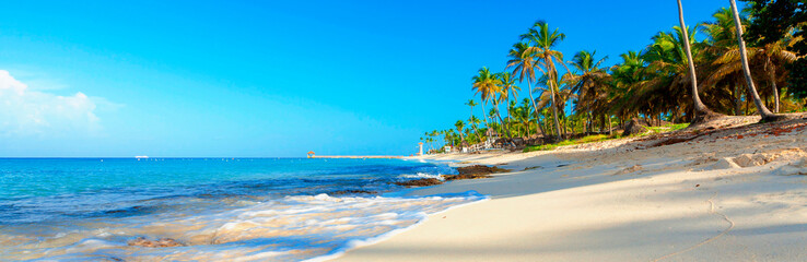 Tropical beach in Dominican Republic. Coconut Palm trees on white sandy beach.