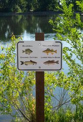 Sign with Fish Images by Local Lake in Summer