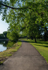 Walking Path Around Grass Covered Lake Park with Cottonwood Trees