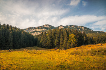 Autumn Landscape with Meadow, Forest and Rocky Ohniste Hill in Slovakia