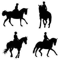 Fototapeta equitación obraz