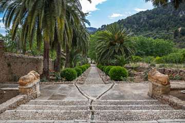 Alley in the Alfabia Gardens park on Tramuntana mountain, Mallorca, Spain
