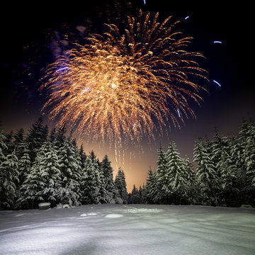 Winter night landscape with forest, pink polar light and fireworks over the taiga. New Year card with forest, fireworks and pink sky.