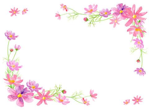 コスモスの花の水彩イラストで装飾したフレーム、メッセージカード