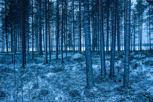 Winter landscape, Akaslompolo, Lapland, Finland