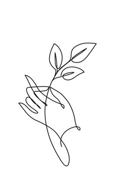 Hand holding leaves. Cotiniuous line drawing