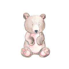 Watercolor Bear Animals Isolated On A White Background Hand Drawn Illustration