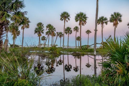 scenes around hunting island south carolina in summer