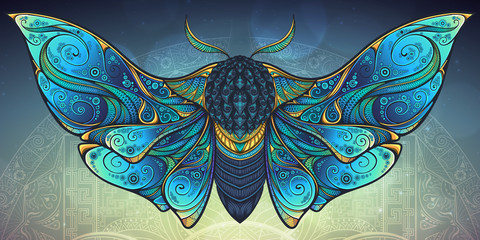 Abstract mystical Moth in psychedelic design. Vector illustration. Wall mural