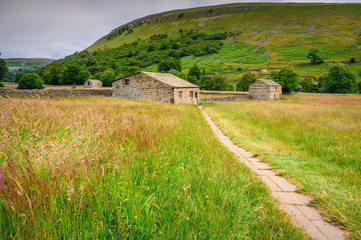 Muker Hay Meadows and Field Barns, in Swaledale one of the most northerly dales in the Yorkshire Dales National Park, famous for its wildflower meadows and field barns