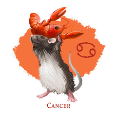 Cancer creative digital illustration of astrological sign. Rat or mouse symboll of 2020 year signs in zodiac. Horoscope water element. Logo sign with crab. Graphic design clip art for web and print.