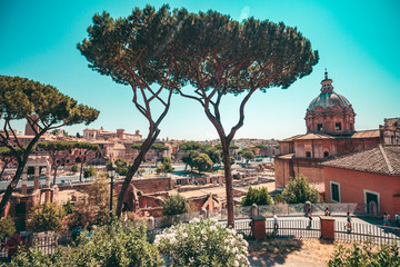 Poster - A typical landscape of Rome with tall trees and ancient buildings