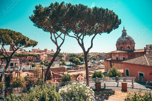 Fototapete A typical landscape of Rome with tall trees and ancient buildings