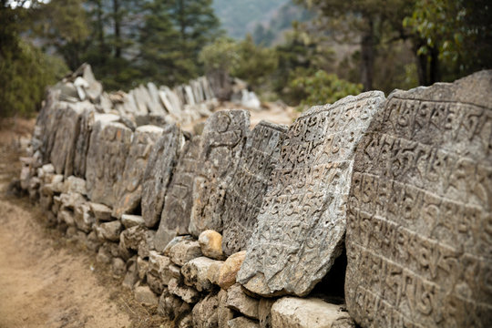 Buddhist Stone Tablets Along Path