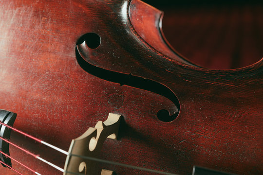 Double bass close-up