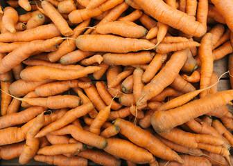 Pile of fresh carrots at Farmers Market, New York City