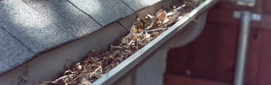 Panoramic gutter clogged by dried leaves and messy dirt need clean-up