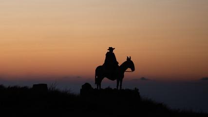 The pilgrim on the mule