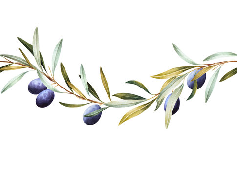 Seamless border of black olive tree branches. Hand drawn watercolor illustration. Decorative design elements.