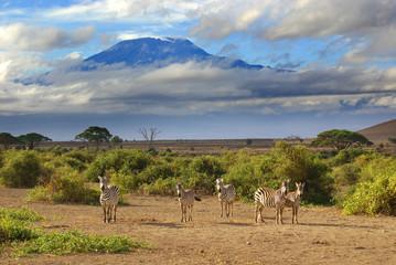Mount Kilimanjaro on a beautiful morning, Tanzania, Africa from Kenya