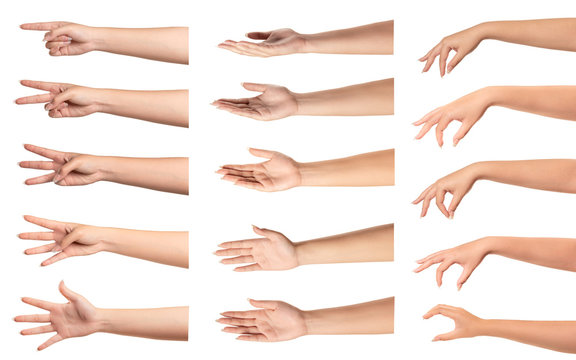 Set of  woman hands with different gestures on white...