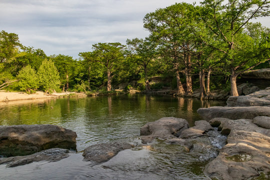 Large trees along a stream at McKinney Falls State Park, Austin, Texas