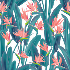Bird of paradise tropical flower vector seamless pattern. Jungle plant paradise tropical summer fabric design. South African plant tropical blossom of crane flower, strelitzia. Floral textile print.