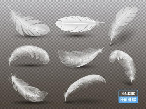White Feathers Realistic Transparent Set