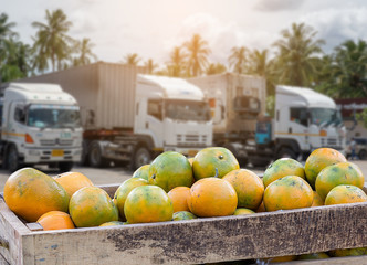 Orange Fruit and food distribution, tropical fruit of Thailand .Truck loaded with containers reefer control by ventilator mode to be shipped to the market.