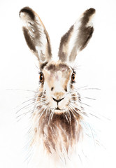 Easter bunnies watercolor illustration, rabbit portrait isolated