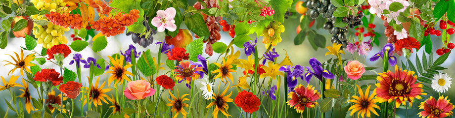 Türaufkleber Garten image of beautiful flowers in the garden in summer