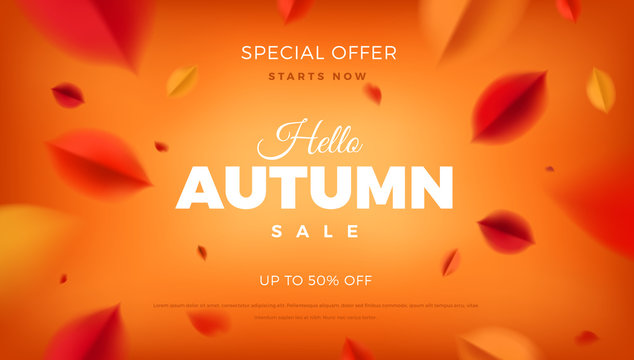 Autumn sale banner background with red leaves, fall nature vector promo design elements. Web layout template