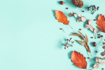Autumn composition. Dried leaves, flowers on pastel blue background. Autumn, fall, winter concept. Flat lay, top view, copy space